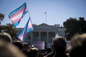 Trump Genitalia Transgender