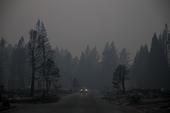 Calif Wildfires