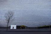 Britain Virus